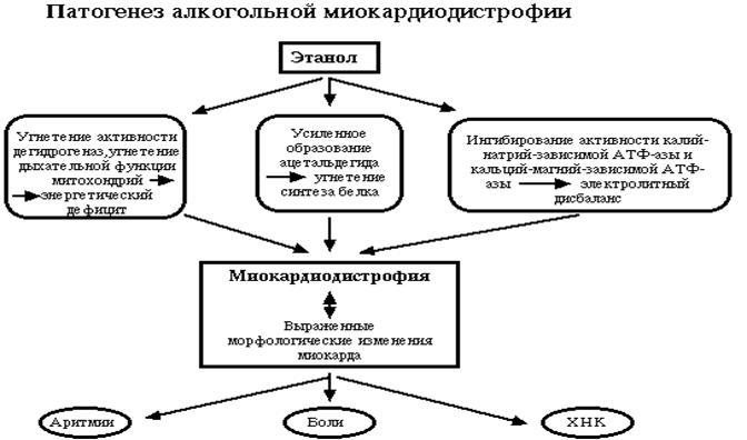 Кодирование от алкоголизма в Минске. кодировка от алкоголизма. кодировка от алкоголизма , закодироваться от